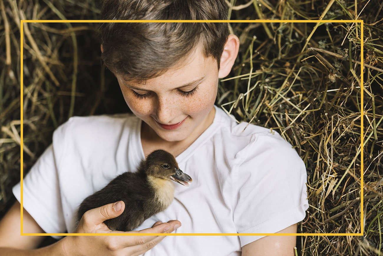 Young boy holding chick in hand
