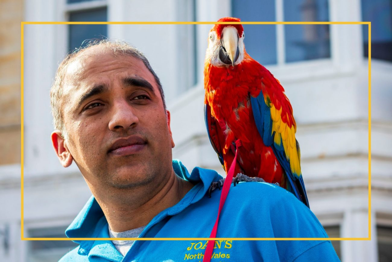 Man with bright red parrot on his shoulder looking to the right